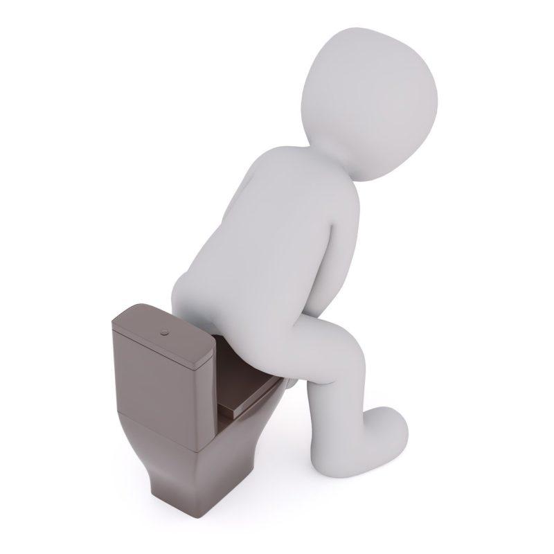 トイレで便座に座ろうとする人の画像